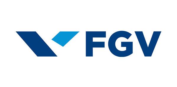 logotipo fgv